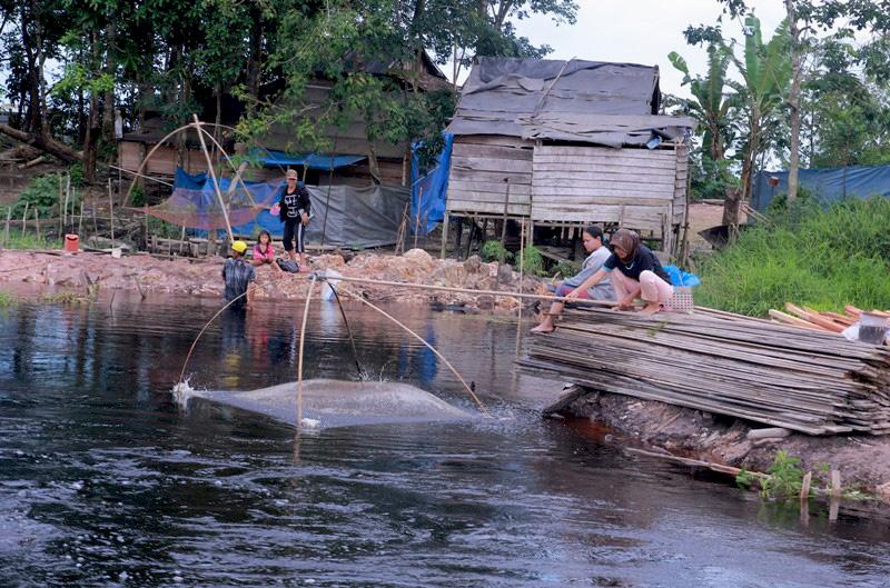 Sejak-lahan-gambut-rusak-masyarakat-tidak-dapat-menikmati-ikan-tawar-seperti-di-masa-lalu.-Foto-Berlian-Pratama