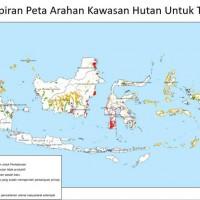 Lampiran Peta Arahan Kawasan Hutan Untuk TORA