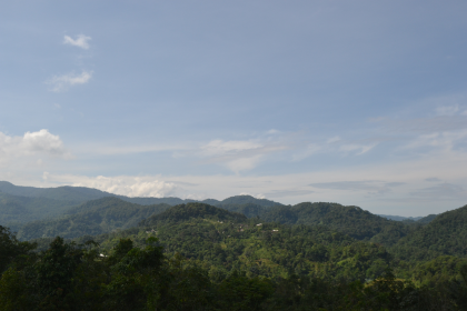 landscape Hutan adat Kasepuhan Karang