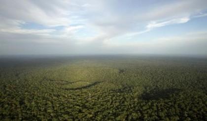 wah-4-1-juta-ha-kawasan-hutan-untuk-reforma-agraria-ETgVaKAPVR