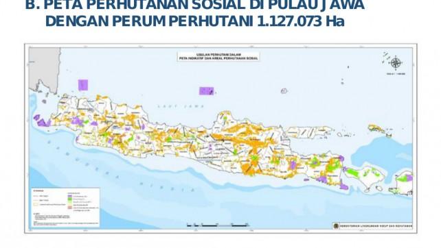Mengenal Lebih Dekat IPHPS di Wilayah Kerja Perum Perhutani