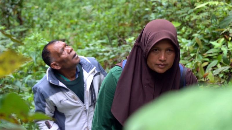 Sumini, Ketua Lembaga Pelindung Hutan MpU Uteun dalam sebuah patroli hutan bersama rekan ranger pria_BBC